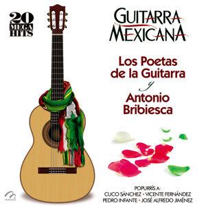 Los Poetas De La Guitarra Y Antonio Bribiesca 歌手頭像