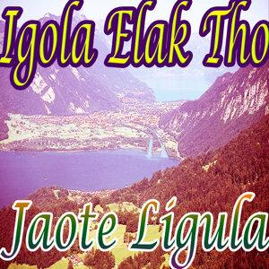 Jaote Ligula 歌手頭像
