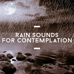 Meditation Rain Sounds & Deep Sleep Rain Sounds 歌手頭像