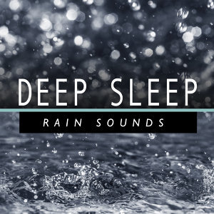 Deep Sleep Meditation & Deep Sleep Rain Sounds 歌手頭像