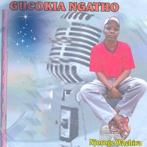 Njoroge Wachira 歌手頭像