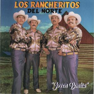 Los Rancheritos del Norte 歌手頭像