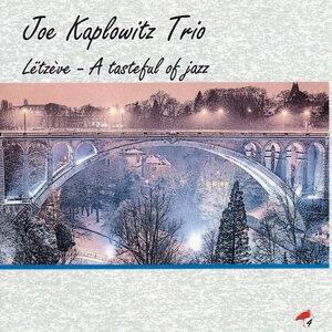 Joe Kaplowitz Trio 歌手頭像