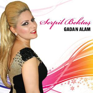 Serpil Bektaş 歌手頭像
