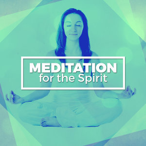 Meditation Deep Sleep 歌手頭像
