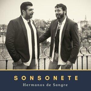 Sonsonete