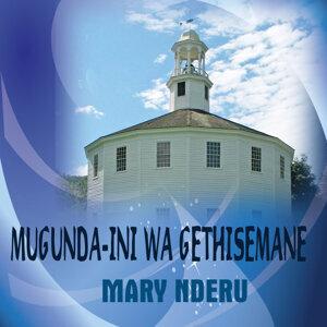 Mary Nderu 歌手頭像