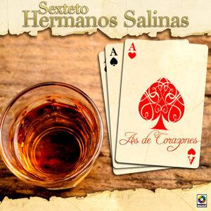 Sexteto Hermanos Salinas 歌手頭像