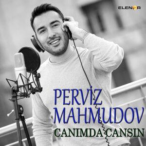 Perviz Mahmudov 歌手頭像