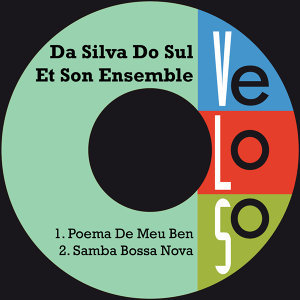 Da Silva Do Sul Et Son Ensemble 歌手頭像