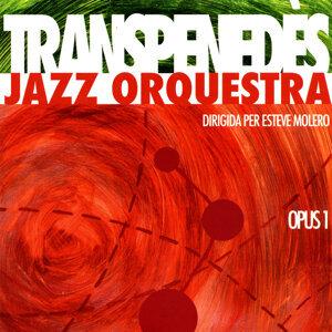 Transpenedès Jazz Orquestra 歌手頭像