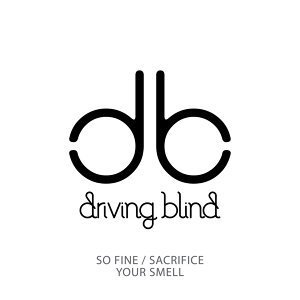 Driving Blind 歌手頭像