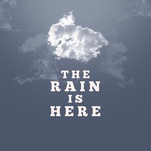 Rain Sounds Ambience 歌手頭像
