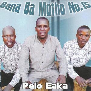 Bana Ba Motho No. 15 歌手頭像