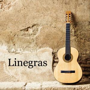 Linegras 歌手頭像