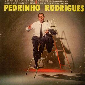 Pedrinho Rodrigues 歌手頭像