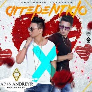 AP-1 Y Andreyk 歌手頭像