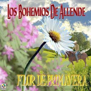 Los Bohemios De Allende 歌手頭像
