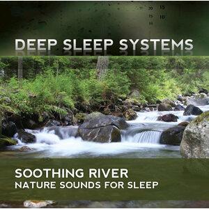 Deep Sleep Systems 歌手頭像