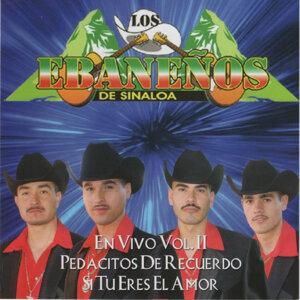 Los Ebanenos de Sinaloa 歌手頭像