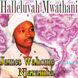 James Wahome Njaramba 歌手頭像