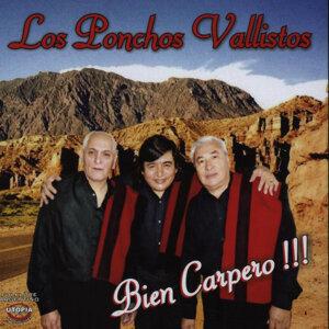 Los Ponchos Vallistos 歌手頭像