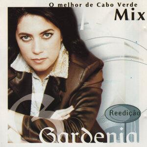 Gardenia Benrós 歌手頭像