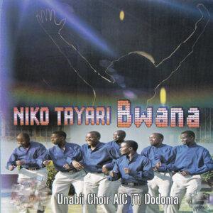 Unabii Choir AIC (T) Dodoma 歌手頭像