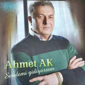 Ahmet Ak 歌手頭像