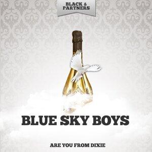 Blue Sky Boys 歌手頭像