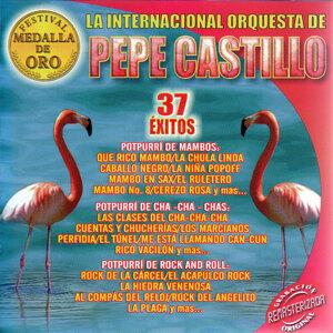 La Internacional Orqu. De Pepe Castillo 歌手頭像
