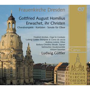 Ludwig Guttler 歌手頭像