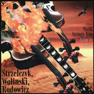 The World Strings Trio 歌手頭像