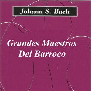 Orquesta de San Marco 歌手頭像