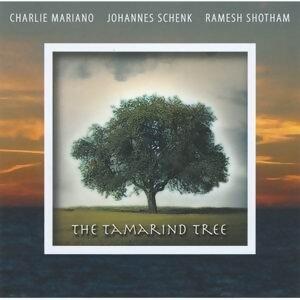 Charlie Mariano & Johannes Schenk 歌手頭像
