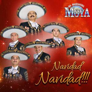 El Mariachi Moya 歌手頭像