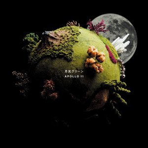月光グリーン 歌手頭像