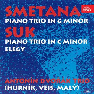 Antonín Dvořák Trio 歌手頭像