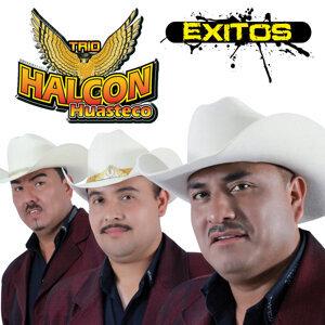 Trio Halcon Huasteco 歌手頭像