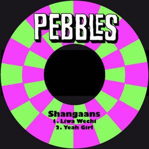 Shangaans 歌手頭像