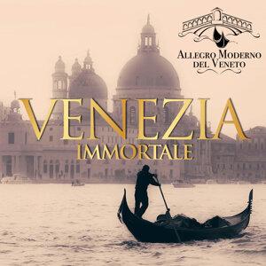 Allegro Moderno del Veneto 歌手頭像
