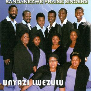 Sandanezwe Praise Singers 歌手頭像