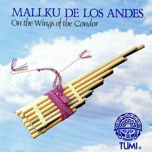 Mallku de Los Andes 歌手頭像