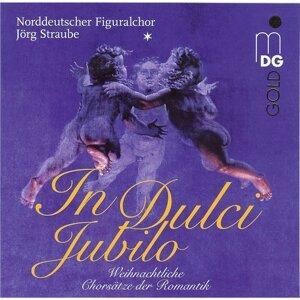 Jörg Straube, Norddeutscher Figuralchor 歌手頭像