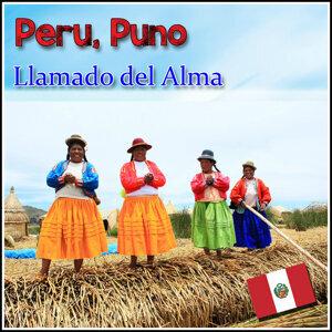 Zampoñistas del Altiplano 歌手頭像