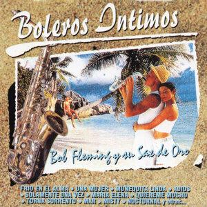 Bob Fleming Y Su Sax De Oro 歌手頭像
