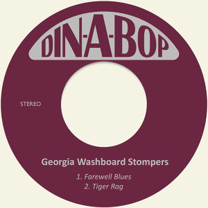 Georgia Washboard Stompers