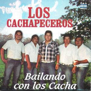 Los Cachapeceros 歌手頭像