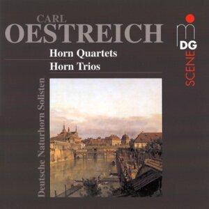Deutsche Naturhorn Solisten 歌手頭像