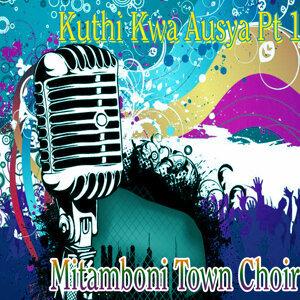 Mitamboni Town Choir 歌手頭像